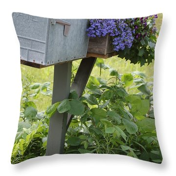 Farm's Mailbox Throw Pillow