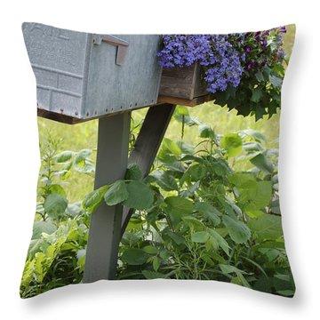 Farm's Mailbox Throw Pillow