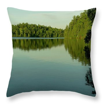 Fast Approaching Throw Pillow