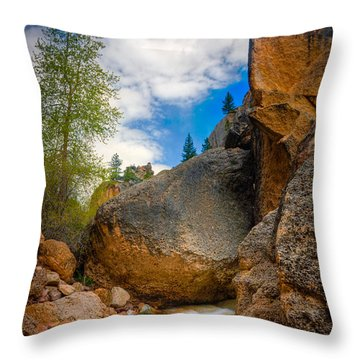 Fast-flowing Crazy Woman Throw Pillow
