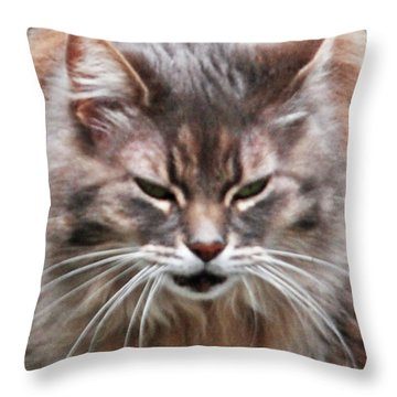 Fat Cats Of Ballard 4 Throw Pillow