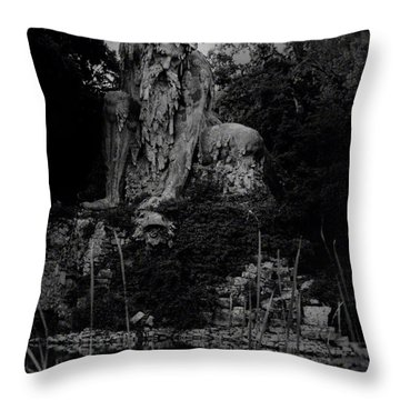 Father Nature Throw Pillow
