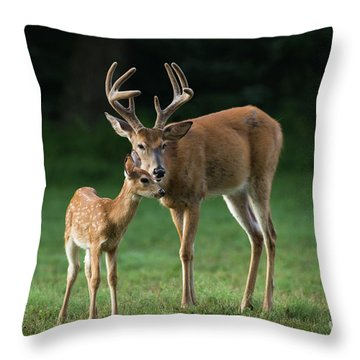 Throw Pillow featuring the photograph Fatherly Advice by Andrea Silies
