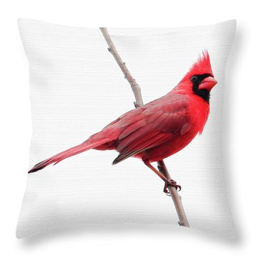 Father's Day Cardinal Throw Pillow by Anita Oakley