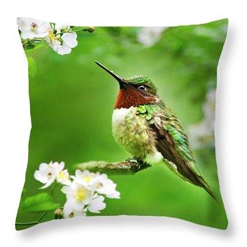 Fauna And Flora - Hummingbird With Flowers Throw Pillow