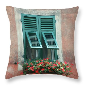 Faux  Painting Window  Throw Pillow