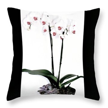 Favorite Gift Of Orchids Throw Pillow by Marsha Heiken