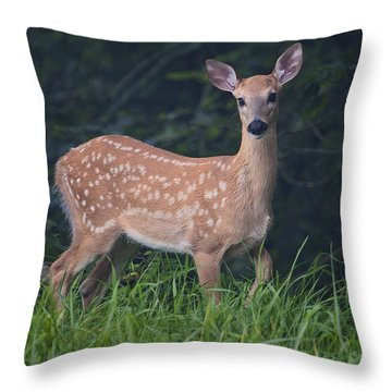 Fawn Doe Throw Pillow
