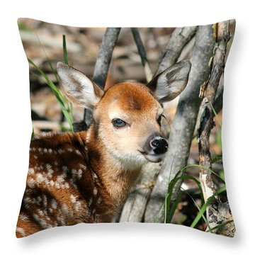 Fawn Face Throw Pillow