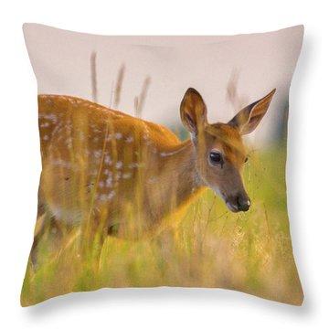 Throw Pillow featuring the photograph Fawn In Grasslands by John De Bord