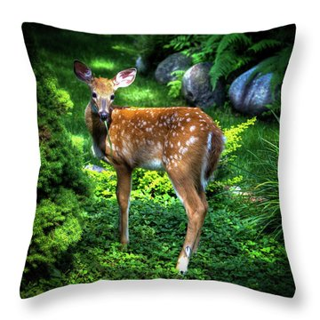 Throw Pillow featuring the photograph Fawn In The Garden by David Patterson
