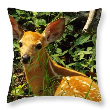 Fawn In The Woods 2 Throw Pillow