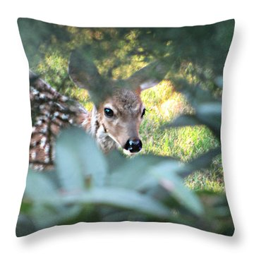 Fawn Peeking Through Bushes Throw Pillow