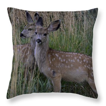 Fawn Twins Throw Pillow