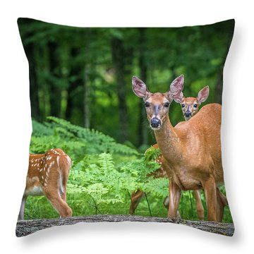 Fawns And Mother Throw Pillow