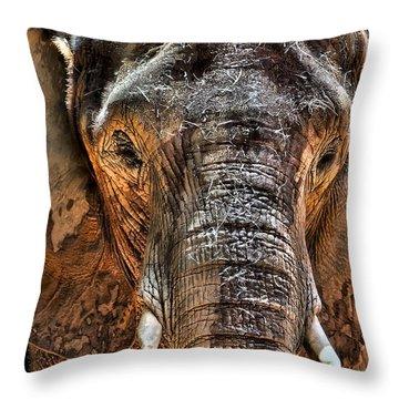 Fearless Throw Pillow by Janet Fikar
