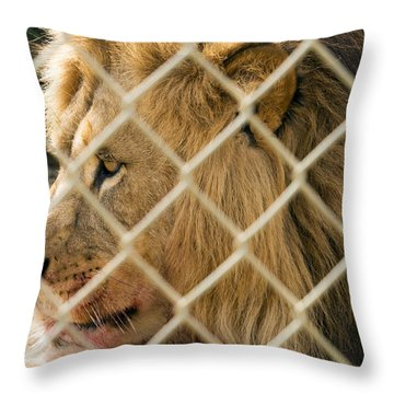 Feast For A King Throw Pillow