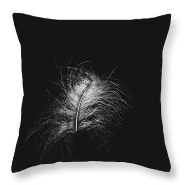 Feather 3 Throw Pillow
