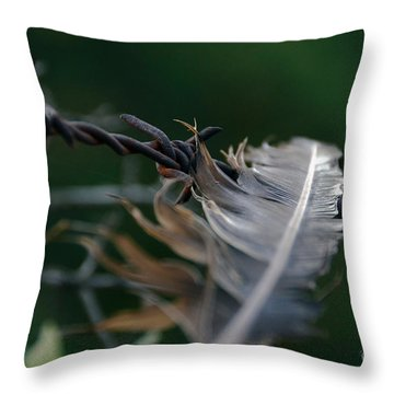 Feather And Barbed Wire Throw Pillow