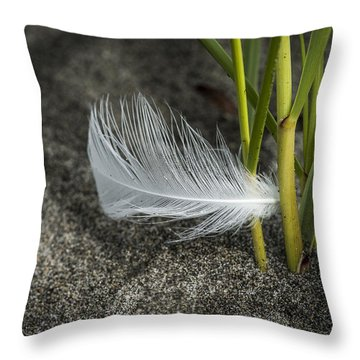 Feather And Beach Grass Throw Pillow