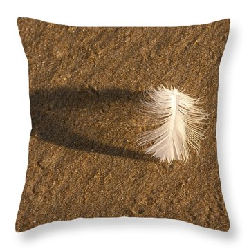 Feather Arch Throw Pillow