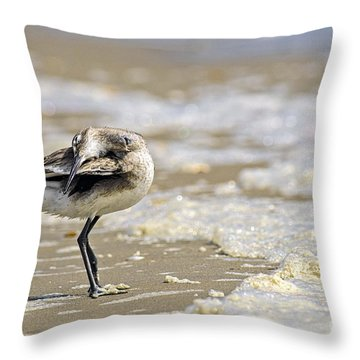 Feather Bed Throw Pillow