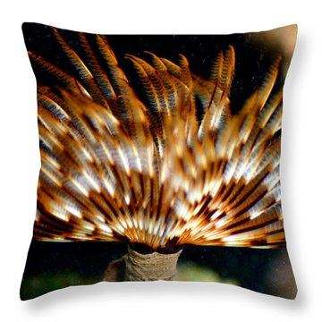 Feather Duster Throw Pillow by Anthony Jones