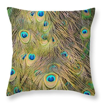 Throw Pillow featuring the photograph Feather Finesse by Margaret Bobb