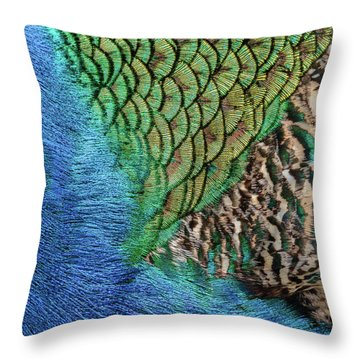 Feathers #1 Throw Pillow