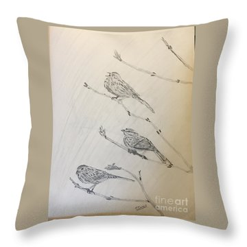 Feathers Friends Throw Pillow