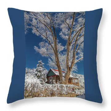 Feathers In The Sky Throw Pillow