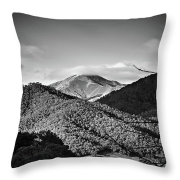 Feathertop Throw Pillow