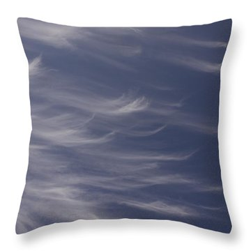 Throw Pillow featuring the photograph Feathery Sky by Shari Jardina