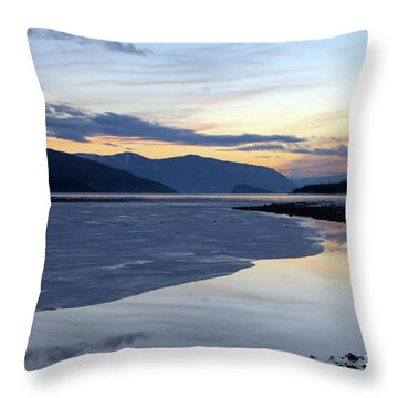 February At Dusk 5 Throw Pillow by Victor K