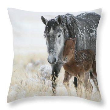 February Colt Throw Pillow