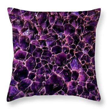 February Throw Pillow