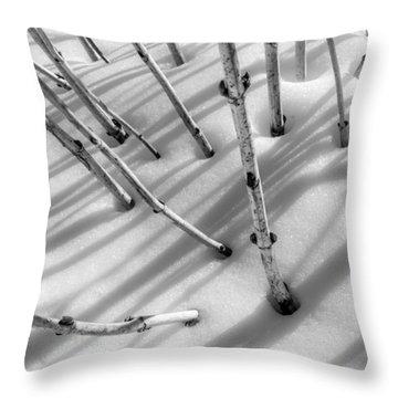 February In Minnesota Throw Pillow