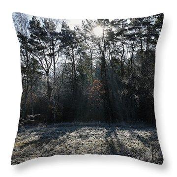 February Morning Throw Pillow