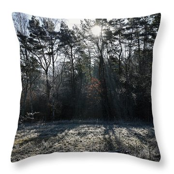 February Morning Throw Pillow
