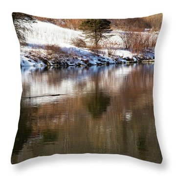 Throw Pillow featuring the photograph February Reflections by Karol Livote