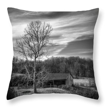 February Sky Throw Pillow