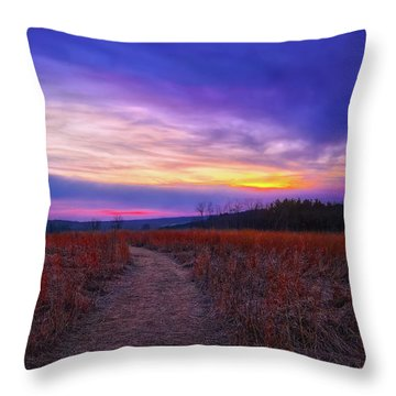 Throw Pillow featuring the photograph February Sunset And Path At Retzer Nature Center by Jennifer Rondinelli Reilly - Fine Art Photography