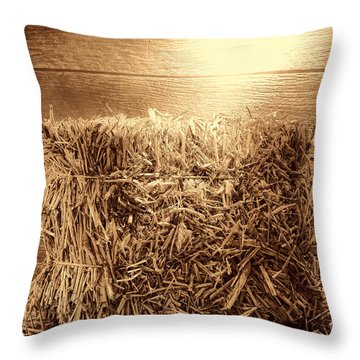 Feed Throw Pillow by American West Legend By Olivier Le Queinec