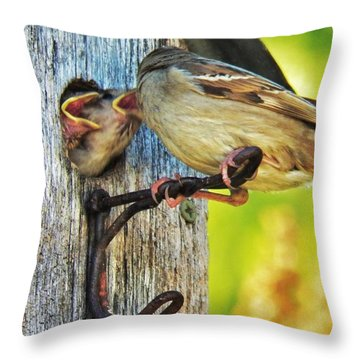 Feeding Baby Sparrows 1 Throw Pillow