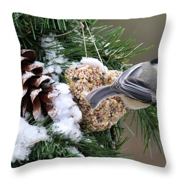 Feeding Feathered Friends Throw Pillow