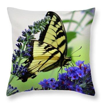 Feeding From A Nectar Plant Throw Pillow