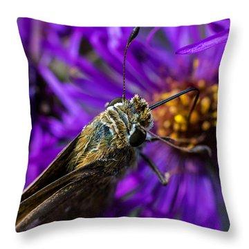 Feeding Throw Pillow