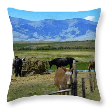Feeding Time Throw Pillow