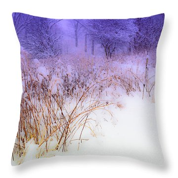 Feel Of Cold Land Throw Pillow
