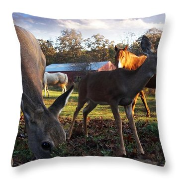 Feeling At Home Throw Pillow by Bill Stephens